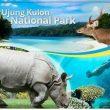 Keistimewaan Taman Nasional Ujung Kulon
