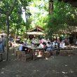 Sensasi Makan di Hutan Bambu Ala Warung Tuman